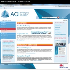 ACI Website design - home page