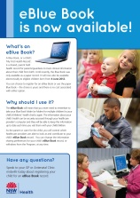 eBluebook flyer for consumers