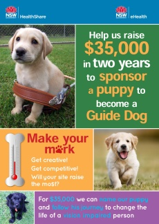 Guide dog puppy fundraiser promotional poster