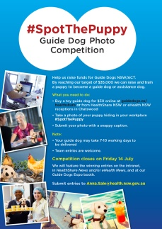#SpotThePuppy competition poster A3